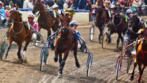 Dansk-Trav-Derby-2010-7079