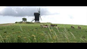 klimaaendringer i groenland film3 moelle