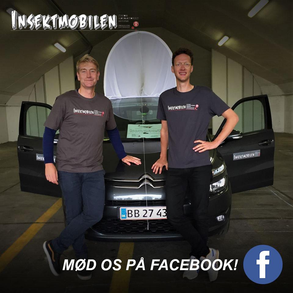 insekt facebook