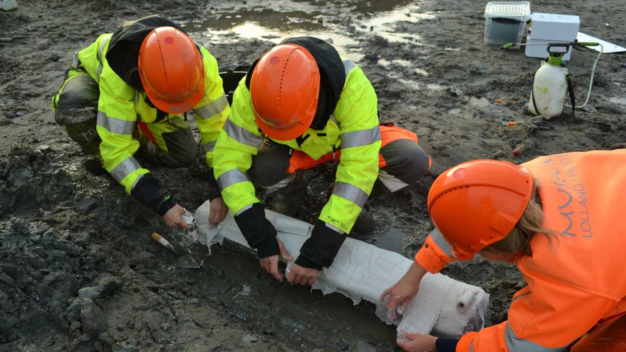 udgravningsbillede