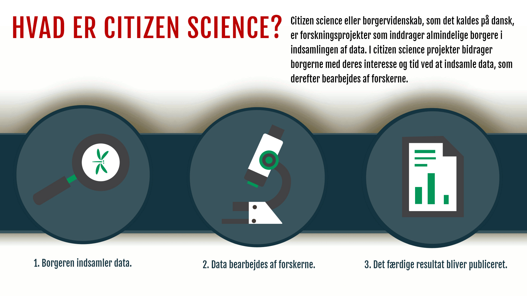 Citizen Science Center Infographic Mediehuset